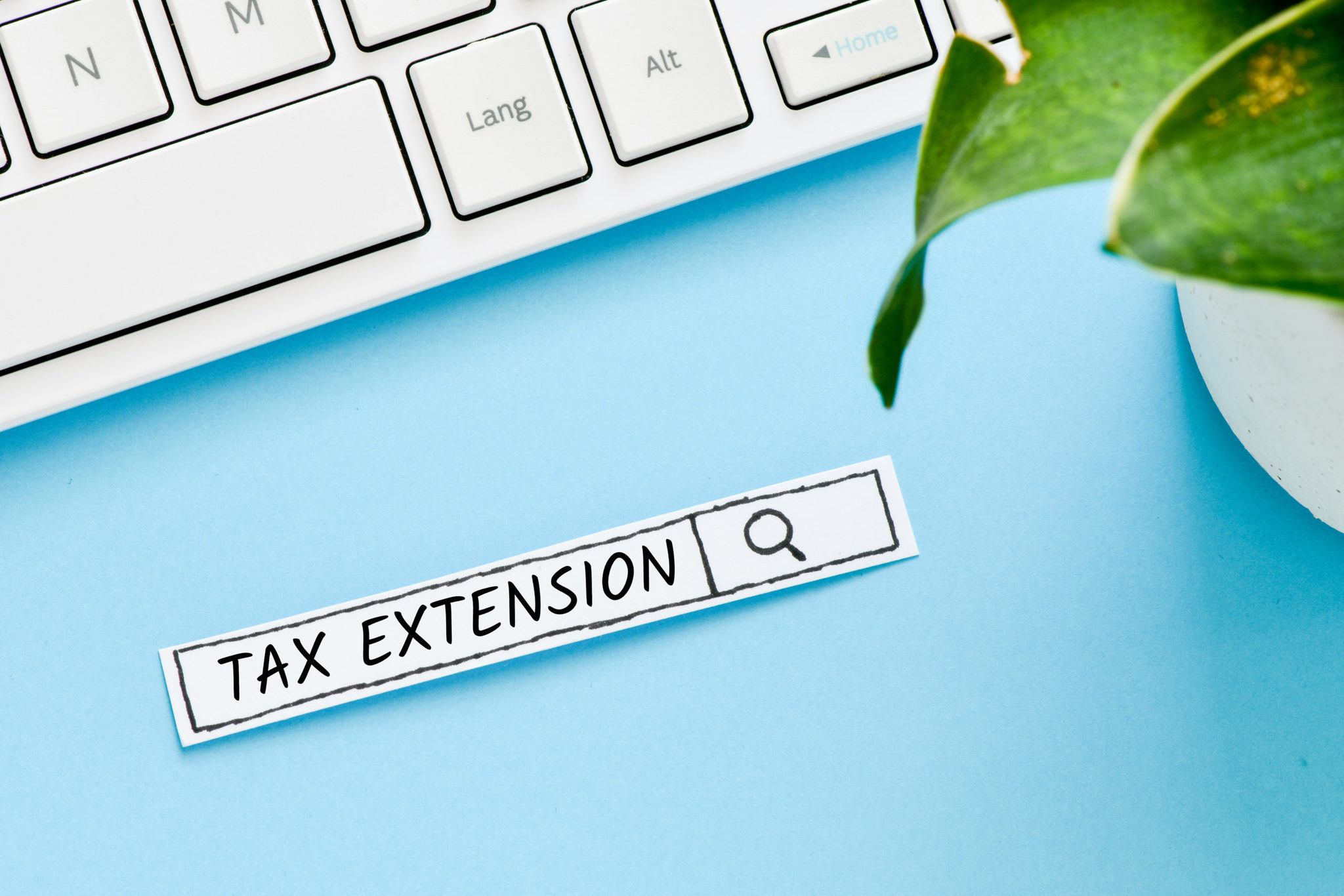 Tax extension text concept. Search line on blue background.